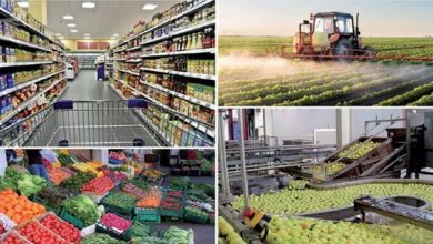 Photo de Productos agrícolas: buenas perspectivas para la campaña de exportación (Ministerio)
