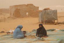 Photo de Argelia/Coyuntura: El precio de una impostura