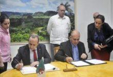 "Photo of ""Cuba en el Sahara"": TV Cubana    Por Hassan Achahbar"