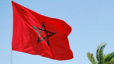 Photo of DDHH: La nobleza y la mentira con distintas miradas. El caso Amnesti y la denuncia de Marruecos.  Por Ernestina Fuentes C.  Editora nacional. www.elsiete.cl