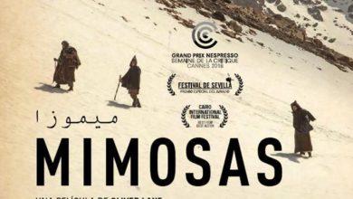 """Photo of Comentario de cine marroquí:  """"MIMOSAS"""". Sin advertencias de sexo explícito ni consumo de drogas, pero es un relato profundamente contemporáneo Por: Jorge Tapia Vidal  Editor cultural. www.elsiete.cl"""