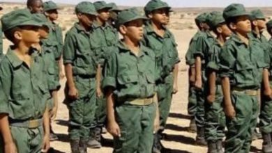 Photo of Nostalgia de un separatista franquista:  Sahara marroquí: La perversa lógica del generalito de plomo Jesús Argumosa Pila
