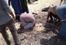 """Photo de El Consejo de Seguridad reitera su """"preocupación"""" por las provocaciones y violaciones de los acuerdos militares por parte del polisario"""